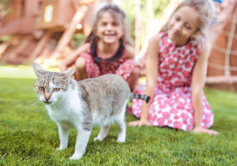 """<span class=""""caption"""">Pet lovers of the future.</span> <span class=""""attribution""""><span class=""""source"""">Conrado/Shutterstock.com</span></span>"""