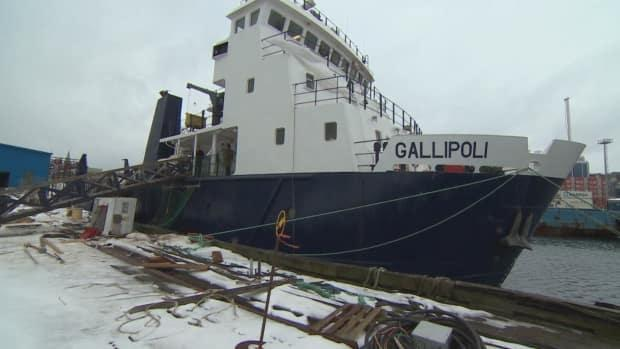The MV Gallipoli, pictured here in 2019, usually provides service on the Ramea-Grey River-Burgeo ferry run but was taken out of service earlier this year. (Eddy Kennedy/CBC - image credit)