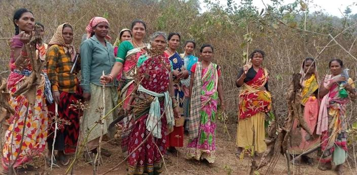 The blazing forest fires in Odisha's Simlipal National Park went unnoticed until the women of the state decided to take charge |Image: Twitter