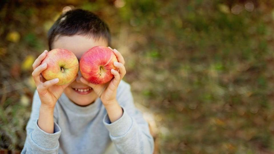 A child holding apples in autumn (Alamy/PA)