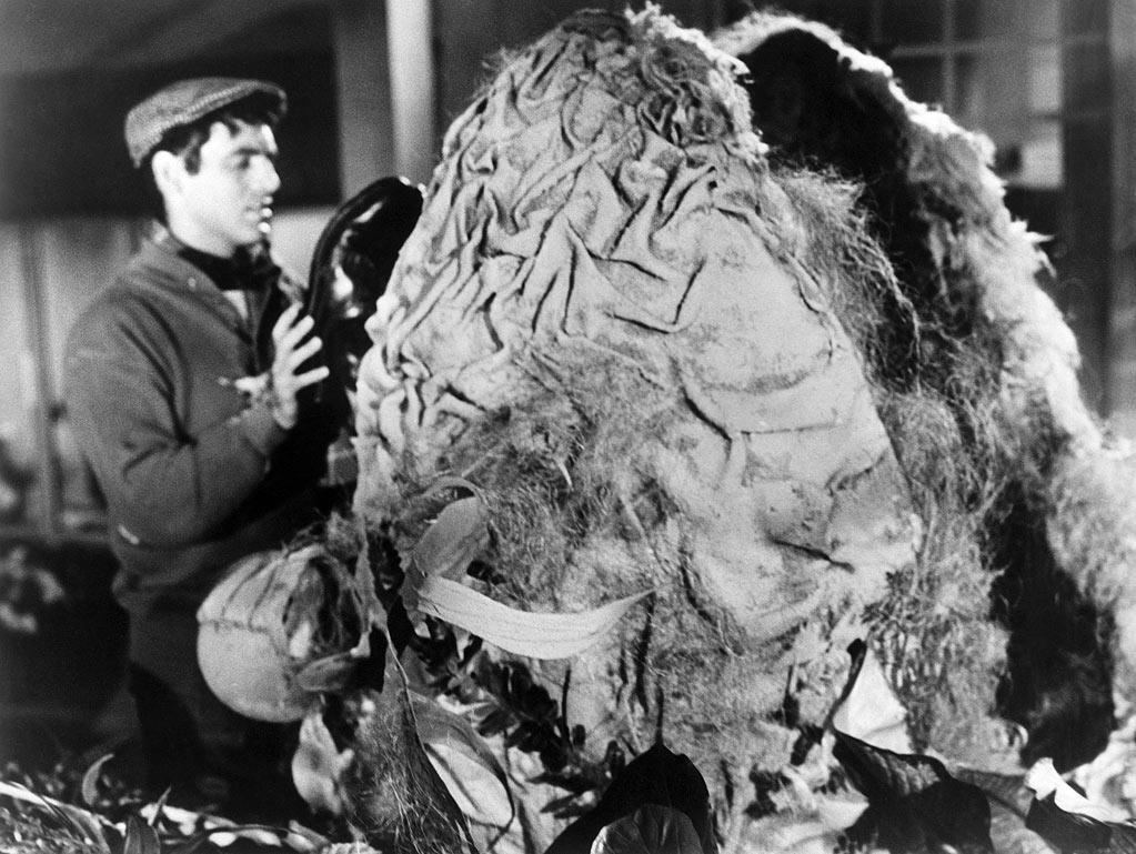 "<a href=""http://movies.yahoo.com/movie/the-little-shop-of-horrors/"">""The Little Shop of Horrors"" </a>(1960): ""Like 'Hairspray,' 'Little Shop of Horrors' went on to become a Broadway musical and a big-budget movie. I hope Roger had points [a percentage of the profits] -- and I'm sure I did."""