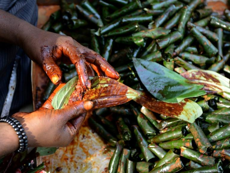 Many Indians chew handmade paan mixtures of tobacco and areca nut