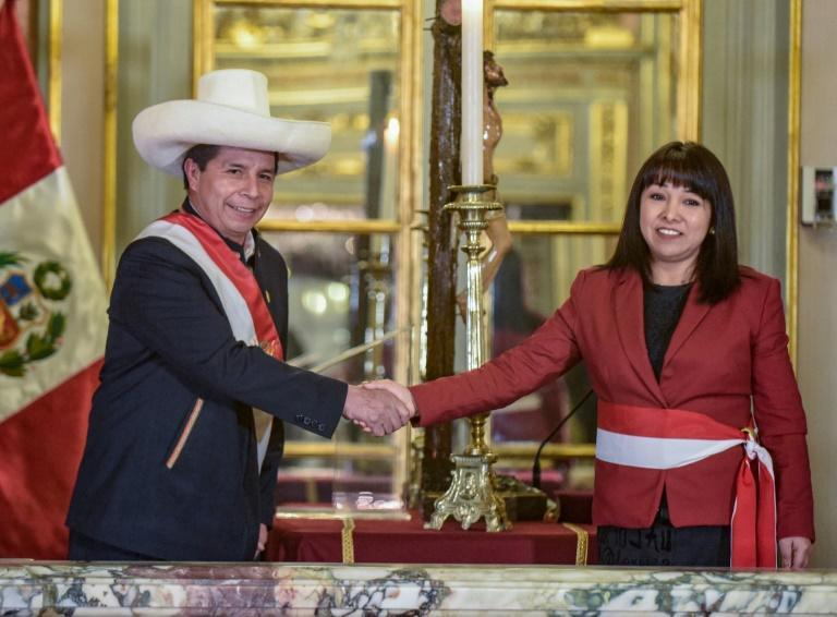 Mirtha Vasquez replaced Guido Bellido -- a hardline leftist and political novice, whose appointment was controversial from the start (AFP/-)