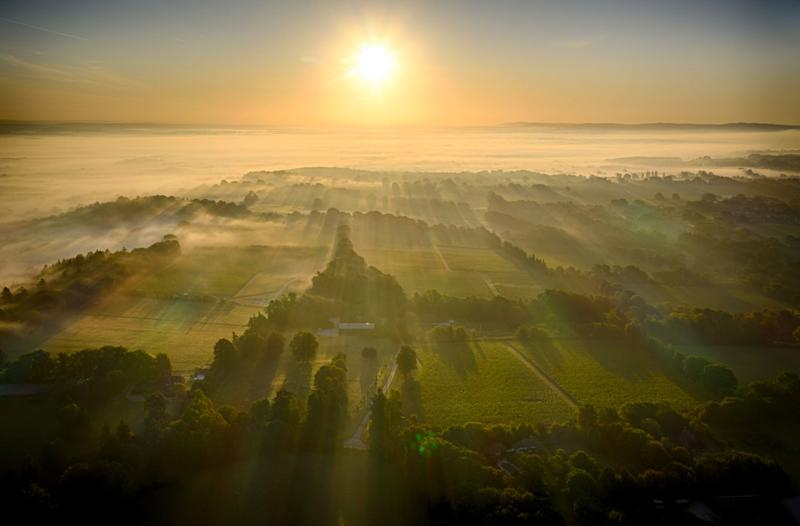 (Mist rolls across The Nyetimber Vineyard on Englands South Downs in this image shot by drone (Picture: Chris Gorman / Big Ladder)