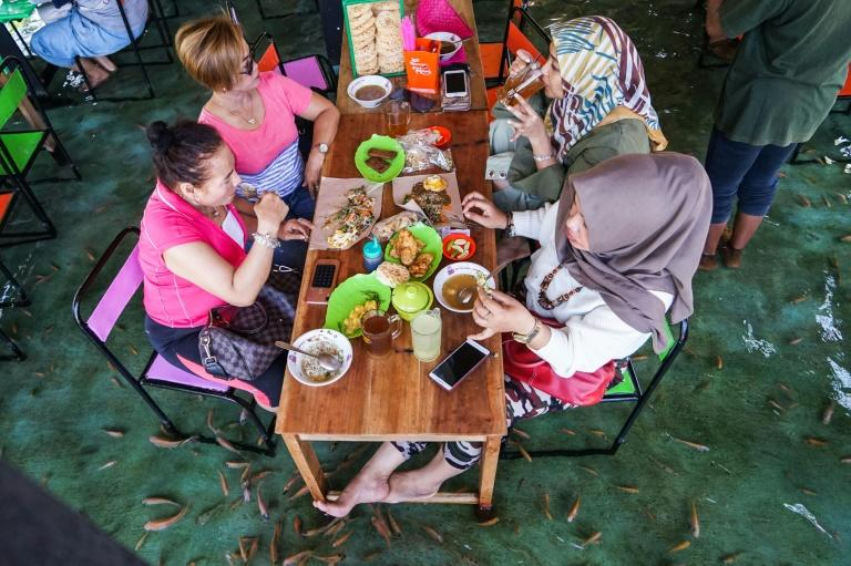 Indonesian diners have lunch while fish nibble dead skin from their feet at a restaurant at Wedomartani village in Yogyakarta