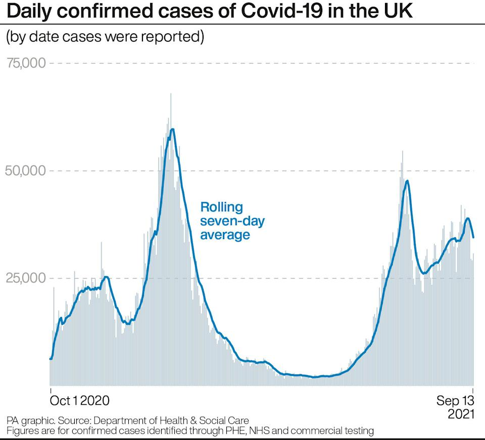 Daily confirmed cases of COVID-19 in the UK. (PA)