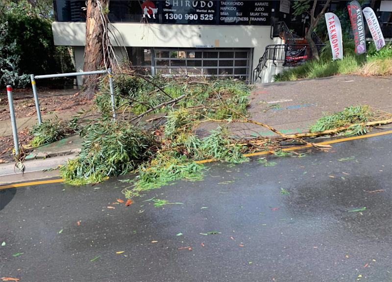 Sydney storms: More than 55,000 properties in Sydney and the Central Coast remain without power after thunderstorms.