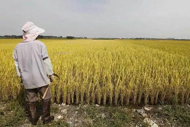farmers, agriculture sector, agriculture industry