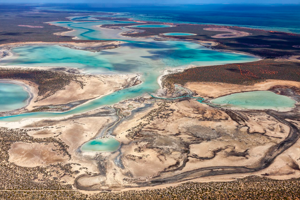 Shark Bay, Australia. Credit: Bruce R. Mitchell/ Wikimedia Commons