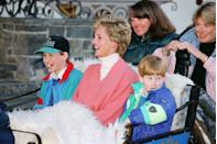 <p>Prince William and Prince Harry enjoy a sleigh ride with their mum during a ski vacation in Austria on March 1, 1994. </p>