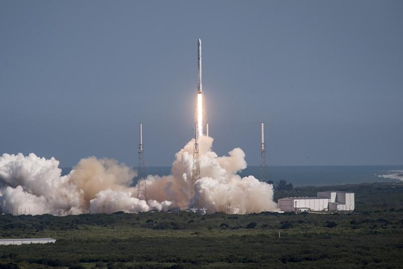 SpaceX might take off again as early as November, exec says