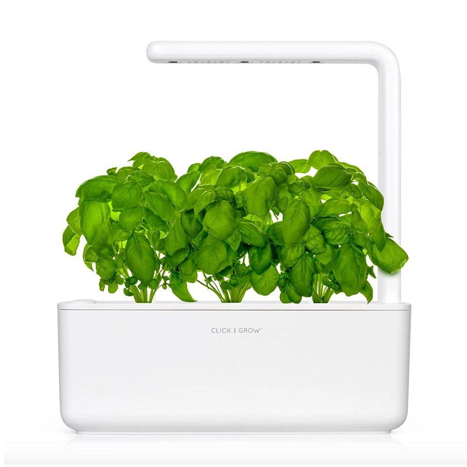 """<p><strong>click and grow</strong></p><p>amazon.com</p><p><strong>$99.95</strong></p><p><a href=""""https://www.amazon.com/Click-Grow-Smart-Garden-Indoor/dp/B01MRVMKQH/ref?tag=syn-yahoo-20&ascsubtag=%5Bartid%7C2089.g.2100%5Bsrc%7Cyahoo-us"""" rel=""""nofollow noopener"""" target=""""_blank"""" data-ylk=""""slk:Shop Now"""" class=""""link rapid-noclick-resp"""">Shop Now</a></p><p>Know someone who wants to start a garden but doesn't naturally have a green thumb? This do-it-all <a href=""""http://www.bestproducts.com/eats/g1523/indoor-herb-growing-gardens/"""" rel=""""nofollow noopener"""" target=""""_blank"""" data-ylk=""""slk:indoor garden"""" class=""""link rapid-noclick-resp"""">indoor garden</a> features a grow light and water reservoir to help plants grow big and strong with minimal user effort. </p><p>It comes with three basil pods, but plenty of other plants — including herbs, fruits and veggies, and flowers — are available for purchase. </p><p><strong>More:</strong> <a href=""""https://www.bestproducts.com/lifestyle/g370/thoughtful-last-minute-gift-ideas/"""" rel=""""nofollow noopener"""" target=""""_blank"""" data-ylk=""""slk:Last-Minute Gift Ideas That Will Really Wow"""" class=""""link rapid-noclick-resp"""">Last-Minute Gift Ideas That Will Really Wow</a></p>"""