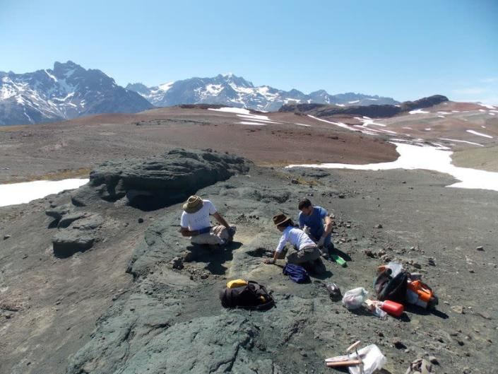 Technicians Marcelo Isasi, Marcela Milani, and paleontologist Nicolas Chimento work on the excavation of pieces of the Burkesuchus mallingrandensis, in the Aysen region of Chilean Patagonia