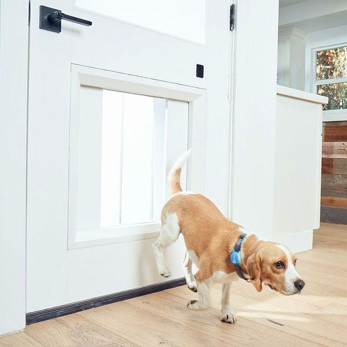 "<p>If you want to treat your pup to more time outdoors, even when you're not home to open the door for them, then both you and your furry friend will appreciate LiftMaster's MyQ Pet Portal. The MyQ Pet Portal is a smart pet door that can be controlled remotely. It also comes with live-video streaming and two-way audio, so you can hear or see what your pups are up to. The portal also includes a special collar for your dogs that when in close-range can automatically trigger the door. Once your dogs are through the door, it automatically closes, leaving no room for unwanted guests. </p><p><strong>Date available:</strong> Spring 2021</p><p><a class=""link rapid-noclick-resp"" href=""https://www.myq.com/ces/pet-portal"" rel=""nofollow noopener"" target=""_blank"" data-ylk=""slk:Shop it here"">Shop it here</a></p>"