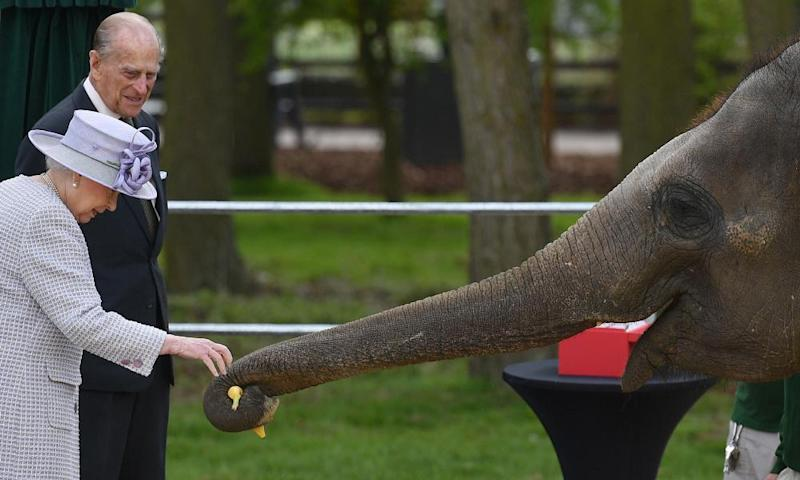 The Queen and Prince Philip meet Donna the elephant