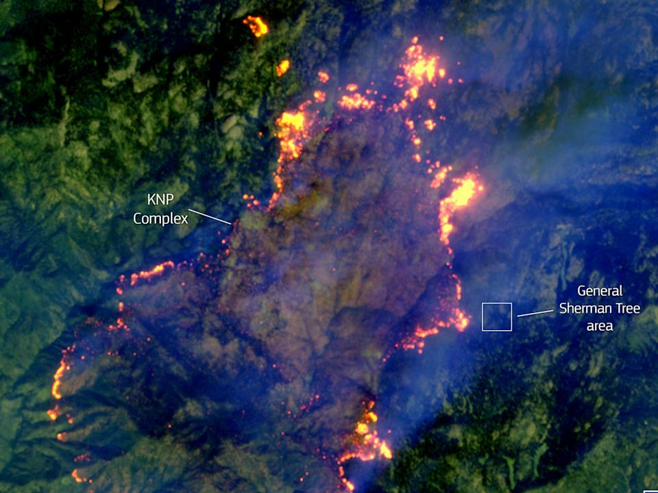 A satellite image on 18 September 2021, shows the KNP Complex fire in California moving towards the site of General Sherman, the largest single stem tree in the world (European Union, Copernicus Sentinel-2 imagery)