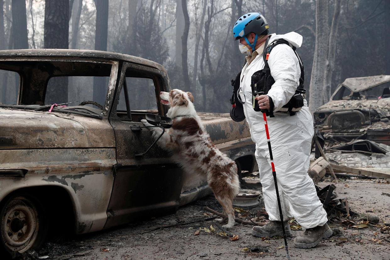 Trish Moutard of Sacramento searches for human remains with her cadaver dog, I.C., on Nov. 14, 2018, near a truck destroyed by the Camp Fire in Paradise, Calif. (Photo: Terray Sylvester/Reuters)
