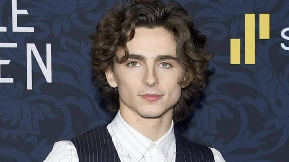Timothee Chalamet shares first look as Willy Wonka on Instagram