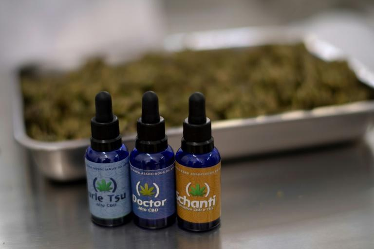 A view of medicinal cannabis oil at the Apepi production farm (AFP/MAURO PIMENTEL)