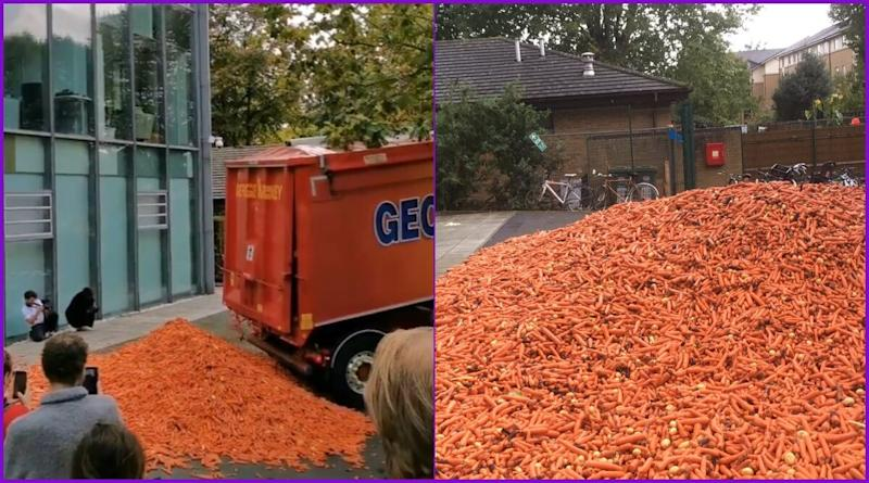 Goldsmiths University Campus Justify 29 Tonnes of Carrot Dumped as 'Art' Installation, But People Are Unconvinced; Watch Viral Videos of 'Orange Tsunami'