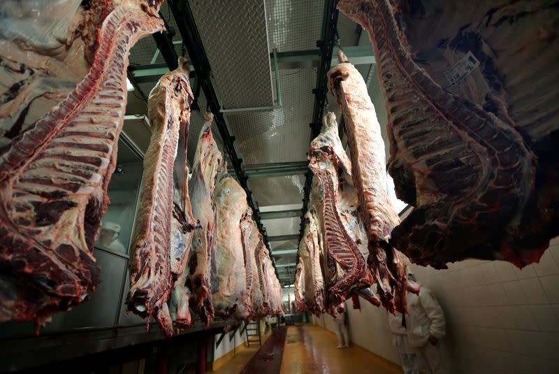 FILE PHOTO: Workers walk behind beef carcasses at the Ecocarne Meat Plant slaughterhouse in San Fernando