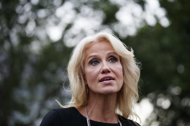 Republicans can find common ground on guns, Kellyanne Conway says