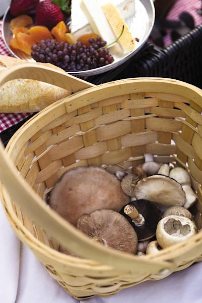 This undated image released by Four Seasons Resort Vail shows mushrooms gathered in a basket in Vail, Colo. For $200 a person, the Four Seasons Resort Vail provides guided expeditions in luxury SUVs to look for mushrooms. The Mushrooms & Mercedes program includes a lunchtime break with wine, cheese and prosciutto, and ends with a three-course mushroom-themed meal back at the hotel. (AP Photo/Four Seasons Resort Vail, Don Riddle)