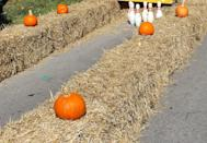 "<p>Head to the local hardware or gardening store for enough hay bales to create your own personal driveway or backyard bowling lane. Don't forget to buy some <a href=""https://www.amazon.com/Lightweight-Physical-Education-Equipment-Childrens/dp/B0713VRZ1L?tag=syn-yahoo-20&ascsubtag=%5Bartid%7C10055.g.28939265%5Bsrc%7Cyahoo-us"" rel=""nofollow noopener"" target=""_blank"" data-ylk=""slk:bowling pins"" class=""link rapid-noclick-resp"">bowling pins</a>, too!</p>"