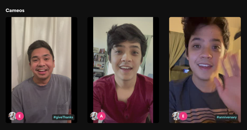 Screen grab from The Filharmonic's Cameo page