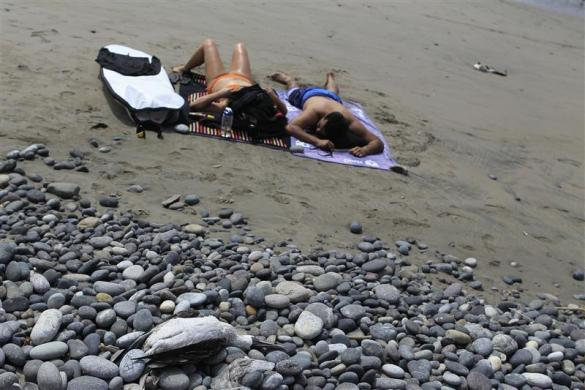 Bathers rest near dead seabirds (foreground, and rear) on the beach at Cerro Azul in Canete, Lima, May 6, 2012.