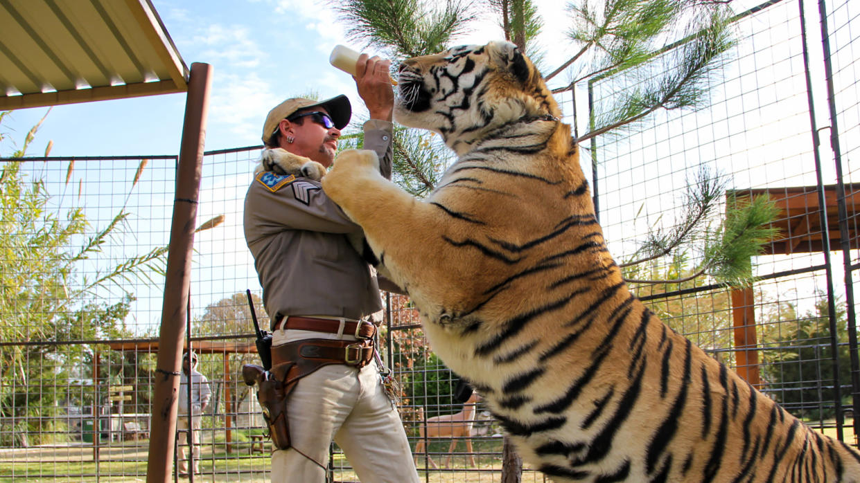Joe Exotic bonds with one of his feline pets in 'Tiger King'. (Credit: Netflix)