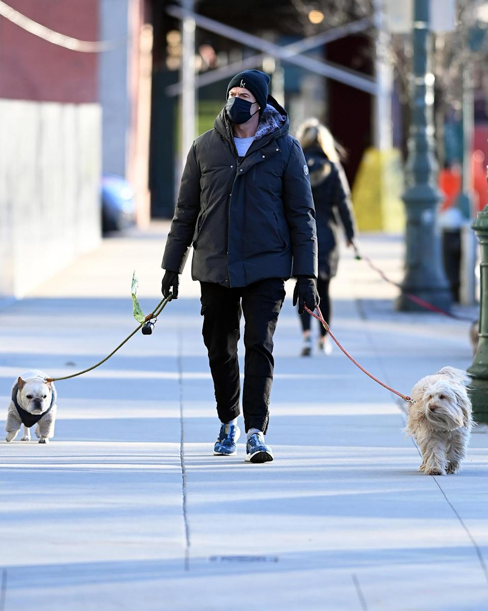 <p>Hugh Jackman was seen wearing a face mask and walking his dogs in New York City.</p>