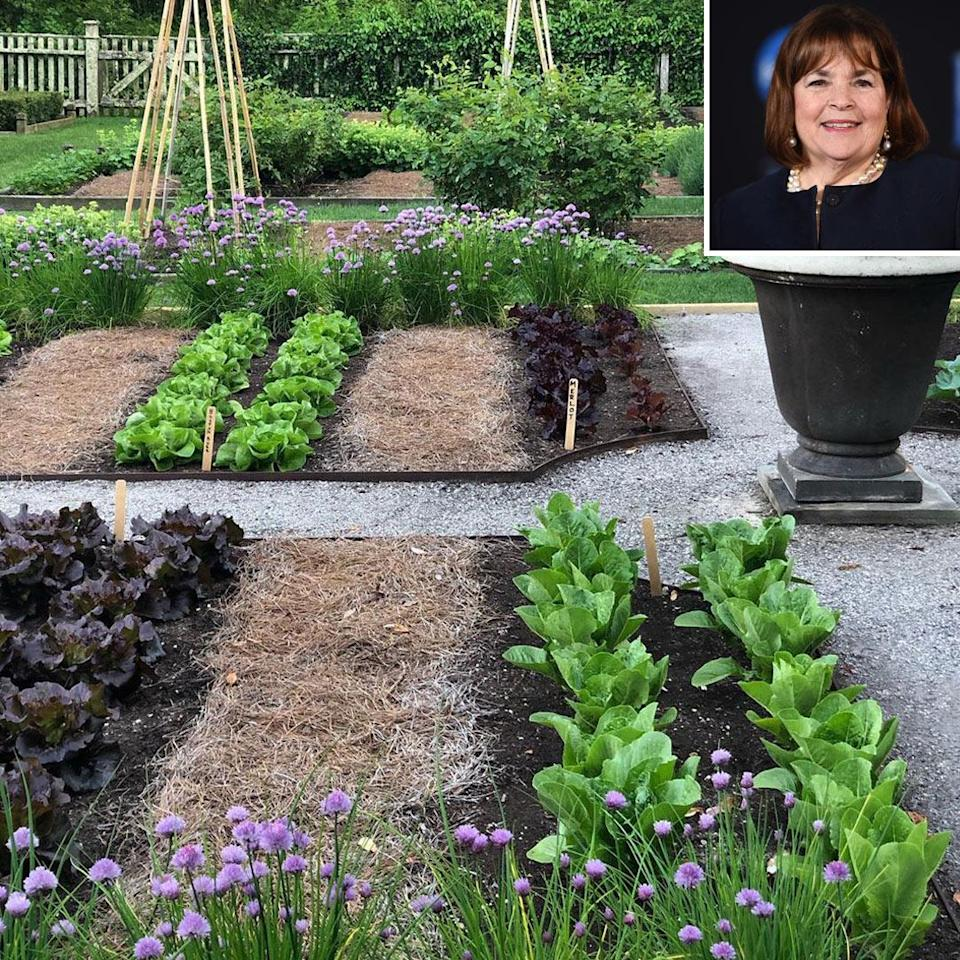 """<p>During one week of quarantine, the Barefoot Contessa decided to take a break from her cooking duties to focus solely on tending to her garden.</p> <p>""""Am I the only one who's a little sick of cooking?? I'm taking the week off and working in the garden,"""" she captioned <a href=""""https://www.instagram.com/p/CA5Yk6QJgCz/"""" rel=""""nofollow noopener"""" target=""""_blank"""" data-ylk=""""slk:this post"""" class=""""link rapid-noclick-resp"""">this post</a>. """"The weather is amazing and it feels so good to be outside!! This is my vegetable garden and it makes me so happy to watch it grow!""""</p>"""