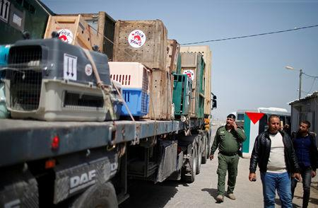 A truck carrying crates containing animals leaves Gaza after the animals were taken out of a Gaza zoo by FOUR PAWS organization at Israeli Erez crossing in the northern Gaza Strip