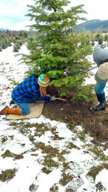 """<p><strong>Missoula, Montana</strong> (November 23-December 16) </p><p>Cozy up by the fire, warm up with a cup of hot cocoa, and fill your stomach with homemade cookies at <a href=""""https://copenhaverplantations.wordpress.com/"""" rel=""""nofollow noopener"""" target=""""_blank"""" data-ylk=""""slk:Copenhaver Plantations"""" class=""""link rapid-noclick-resp""""><strong>Copenhaver Plantations</strong></a>. Even more, Santa stops by to take photos in this winter wonderland.</p>"""