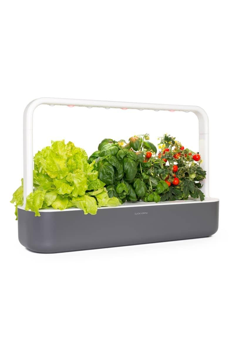 """<p>This <a href=""""https://www.popsugar.com/buy/Click-Grow-Smart-Garden-Self-Watering-Indoor-Garden-388274?p_name=Click%20and%20Grow%20Smart%20Garden%20Self%20Watering%20Indoor%20Garden&retailer=shop.nordstrom.com&pid=388274&price=200&evar1=geek%3Aus&evar9=36026397&evar98=https%3A%2F%2Fwww.popsugar.com%2Ftech%2Fphoto-gallery%2F36026397%2Fimage%2F45754546%2FClick-Grow-Smart-Garden-Self-Watering-Indoor-Garden&list1=shopping%2Cgifts%2Cnordstrom%2Choliday%2Cgift%20guide%2Cdigital%20life%2Clast-minute%20gifts%2Ctech%20gifts%2Cgifts%20for%20men&prop13=mobile&pdata=1"""" class=""""link rapid-noclick-resp"""" rel=""""nofollow noopener"""" target=""""_blank"""" data-ylk=""""slk:Click and Grow Smart Garden Self Watering Indoor Garden"""">Click and Grow Smart Garden Self Watering Indoor Garden</a> ($200) is ideal for someone who lives in a place with no outdoor space. They can grow their own herbs and vegetables indoors.</p>"""