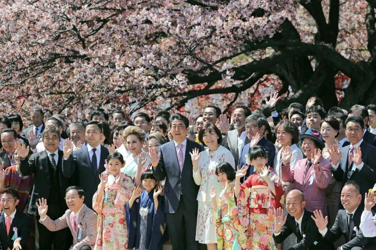 Japan's publicly funded cherry blossom party is intended to honour the great and the good for their achievements (AFP Photo/STR)