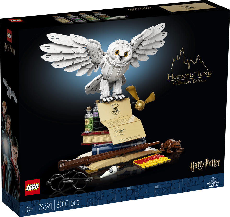 The box for LEGO Harry Potter™ Hogwarts™ Icons Collectors' Edition (Lego Group)