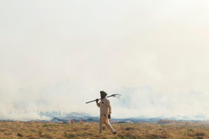 A farmer walks next to burning straw stubble after harvesting a paddy crop in a field on the outskirts of Amritsar on October 11, 2020. (Photo by NARINDER NANU / AFP) (Photo by NARINDER NANU/AFP via Getty Images)