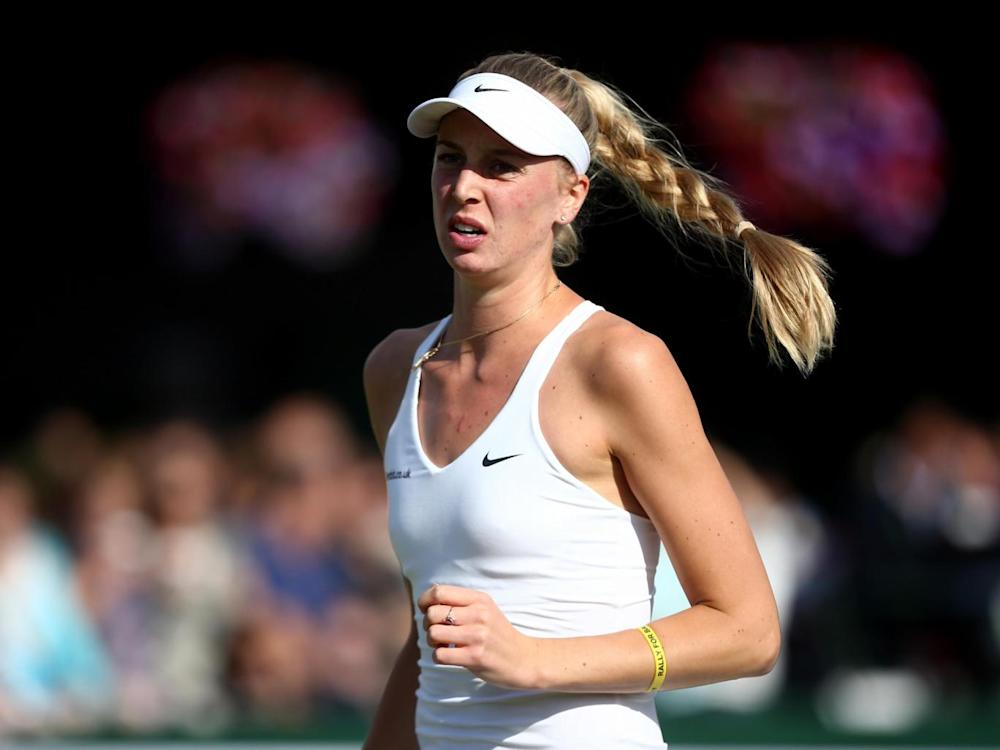 The Brit beat Babos at Wimbledon three years ago (Getty)