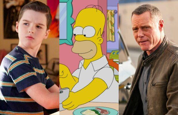 'Young Sheldon,' 'The Simpsons' and 22 Other Spinoff Series Now on the Air (Photos)