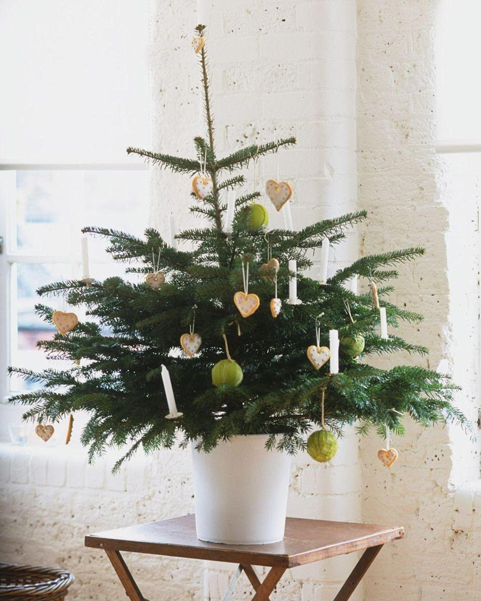 <p>When you're big on holidays but short on space, a tiny tree is the perfect solution. The quirky shape of this miniature pine is accented with spaced-out ornaments, including simple white candles, heart-shaped cookies, and grassy green balls.</p>