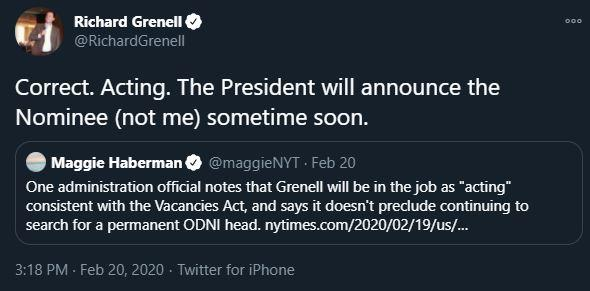 Richard Grenell understood the difference between an interim and full-time appointment in February, before mysteriously forgetting it