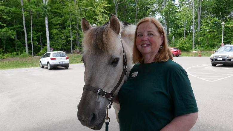 Billy the horse brings comfort to palliative care patients