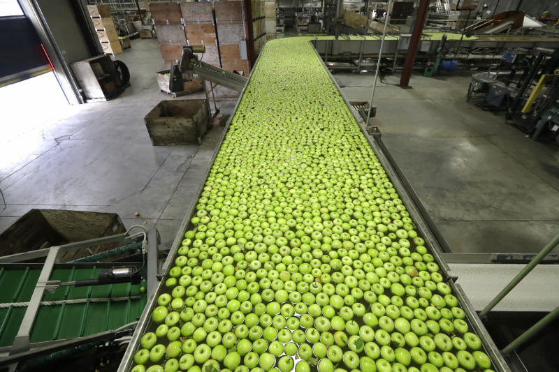 FILE - In this Oct. 15, 2019, file Granny Smith apples are floated toward sorters to ready them for shipping in a packing plant in Yakima, Wash. On Thursday, Nov. 14, the Labor Department reports on U.S. producer price inflation in October. (AP Photo/Elaine Thompson, File)