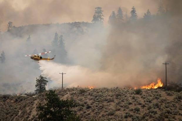 Fire crews tackle the Nk'Mip Creek fire near Osoyoos, B.C., on Wednesday. (Maggie MacPherson/CBC - image credit)