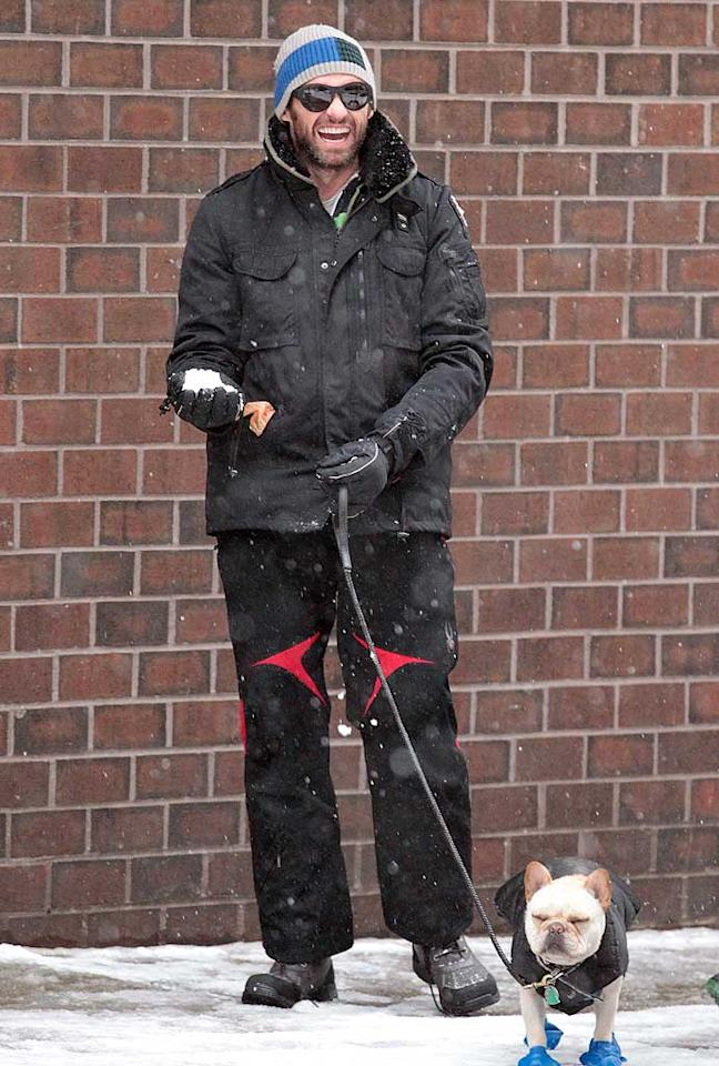 When it snows, Hugh Jackman doesn't just bundle himself up ... he makes sure his French bulldog Peaches stays warm, too! This is the same pooch who joins the Jackman family on their summer trips to St. Tropez. Lucky dog!