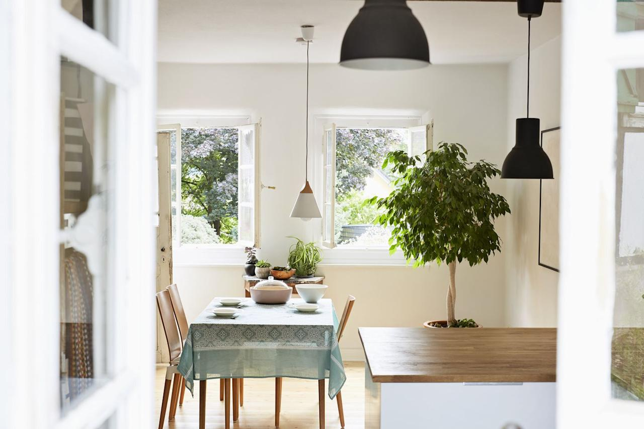 """<p>Not only do indoor plants add color and liveliness to your space, but they also change physical aspects of the environment in pleasant ways. """"Plants can be used to increase the relative humidity indoors, reduce noise, screen unattractive areas, and moderate room temperature by shading a bright, sunny window,"""" says Altman. Before you fill a space with furniture and accessories, take some time to think about how you want to feel in that room and how plants might help you achieve that vibe.</p><p><a class=""""body-btn-link"""" href=""""https://www.amazon.com/Costa-Farms-Majesty-Indoor-8-75-Inch/dp/B00NOL8POA/?tag=syn-yahoo-20&ascsubtag=%5Bartid%7C2141.g.27586276%5Bsrc%7Cyahoo-us"""" target=""""_blank"""">SHOP INDOOR PALM TREE</a></p>"""