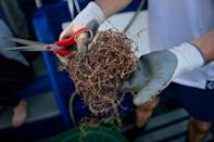 Net Free Seas has salvaged 15 tons of waste netting from sea waters in its first year