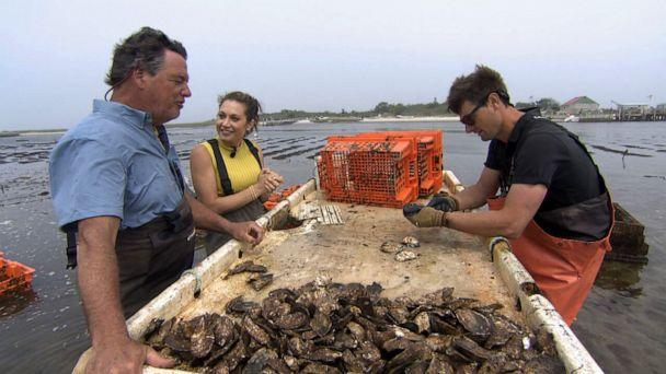 PHOTO: ABC News Chief Meteorologist Ginger Zee talks with Chuck Westfall on his oyster farm in Long Island, New York, on May 26, 2021. (ABC News)